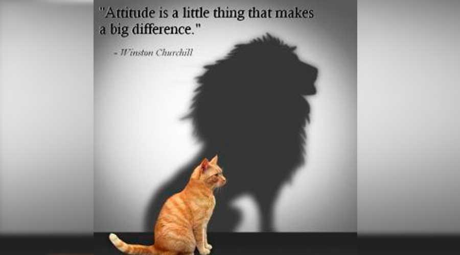 316notes-attitude
